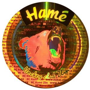 hologram pro hame